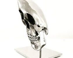 41 Louis Pratt The Ambassador s Skull