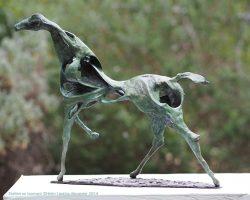 75--Helen-Laetitia-Alexander-Stallion-en-tournant