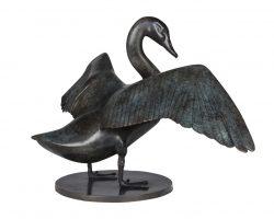 51-Lucy-McEachern-Australian-Black-Swan