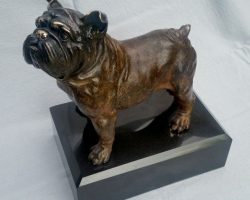 67 - Jake Mikoda - Bulldog