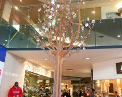 80 - Anton Hassel - Cherry Blossom Tree